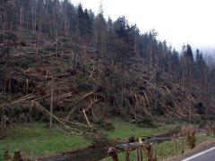 Schäden Meuselbach (SLF)